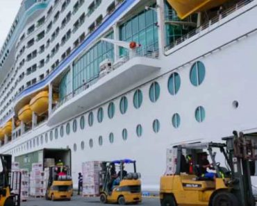 How Cruise Ships Work 1