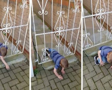 Sneaky Toddler Wriggles Out Of Garden Gate 4