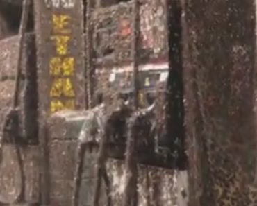 Mayfly Swarm Takes Over Gas Station In Creepy Video 2