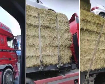 Lorry Full Of Hay Seen Balancing A Car On The Very Top 8