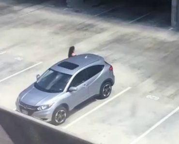 Woman Runs For Her Life After Man Randomly Yells 'Shark!' At Her In An Empty Parking Lot 8
