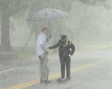 Cop Stands in Pouring Rain to Help Snapping Turtle Cross the Road in Maryland 3
