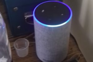 Frustrated Scottish Woman Argues With an Amazon Alexa That Can't Understand Her Accent 12