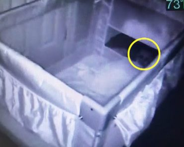 """Mum Who Has Miscarriage Spots """"Ghost Baby"""" In Crib 6"""