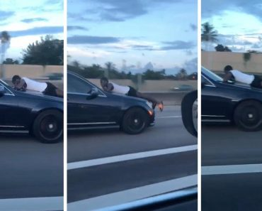 Man Caught Clinging Onto Car Bonnet Down Highway 2