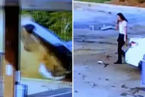 Woman Walks Away Like Everything's Normal After Her Car Goes Airborne And Crashes Into Gas Station 12