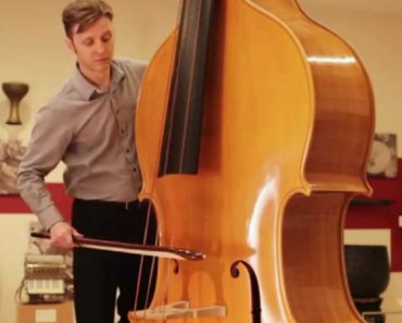 Hear The Octobass, An Instrument (Almost) Too Big To Play 2