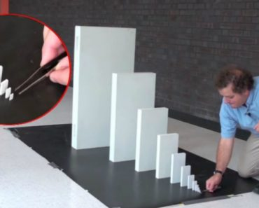 "The Amazing Power Of The ""Domino Chain Reaction""! 1"