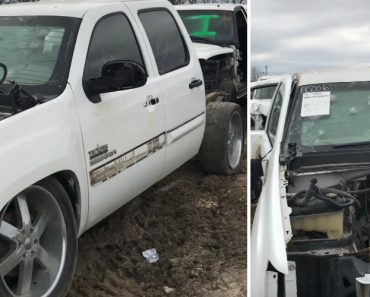 Guy Finds An Old Mexican Cartel Truck, Complete With Bullet Holes All Over The Bulletproof Windscreen 2