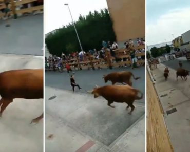 This May Be The Luckiest Guy Who Ever Participated In Running Of The Bulls 9