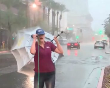 Meteorologist Battles Storm In Phoenix While Reporting On Live TV 8