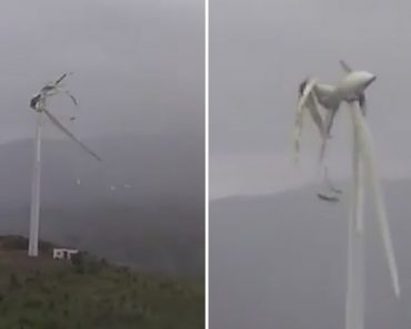 Gusty Winds Shatter Windmill 6