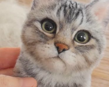 This Is How A Talented Artist Creates Stunningly Realistic Cat Out Of Felted Wool 9
