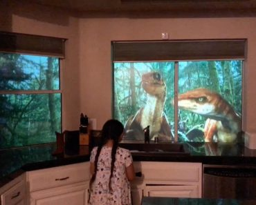 Dad Converts House Into Jurassic Wonderland 6