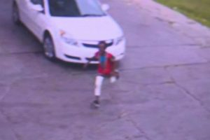 7-Year-Old Jumps Out Of Car Before Thief Speeds Off From Detroit Gas Station 12