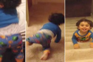 Toddler Has The Greatest Bed Time Escape Of All Time! 10