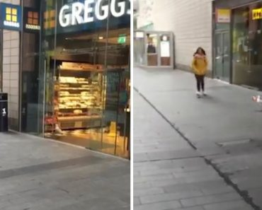 Hilarious Moment Seagull Steals Crisps From Shop 8