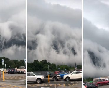 Beautiful And Terrifying: Apocalyptic Shelf Cloud filmed over Anna, Illinois 5