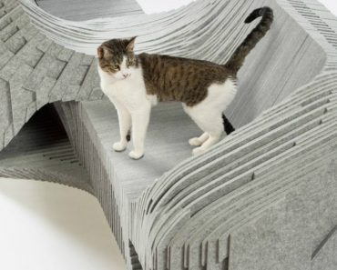 Architects For Animals Design Intricate Outdoor Dwellings For Cats 4