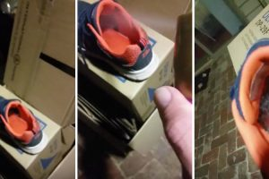 Dad Proves Why You Should Never Put On Shoes Before Checking Inside First 11